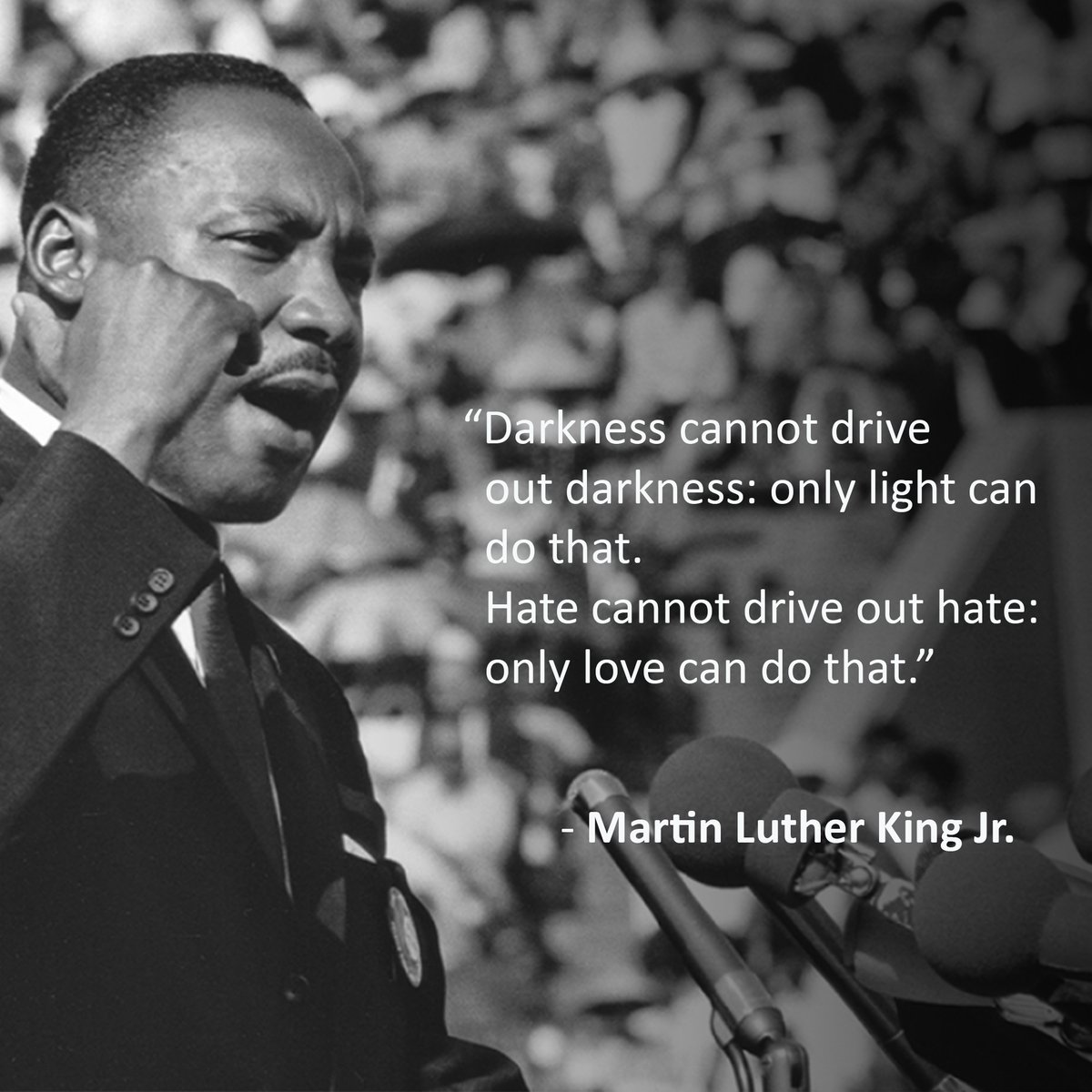 This MLK Day we reflect on the fact that only light can drive out darkness and only love can drive out hate. Today we reaffirm our commitment to be a source of light and love in this world. 🌻 . . . #wellnessgardencbd #MLKDay #king #today #love #life #happy #words #service