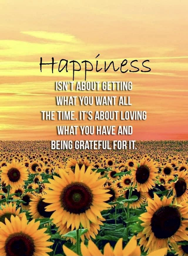 Happiness isn't about getting what you want all the time... it's about loving what you have and being grateful for it. #mondaymotivation #mondaymood #mondayvibes #Monday #motivation #quotes #quote #Inspiration #inspirationalquotes #inspirational