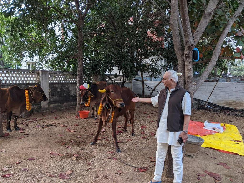 Sri M at the Gaushala in Madanapalle, for the Pongal celebrations last week.   To know more about The Gaushalas, click here:   #SriM #Madanapalle #Gaushala #TheSatsangFoundation #Pongal #Goshala #Newsletter #SriMInspires