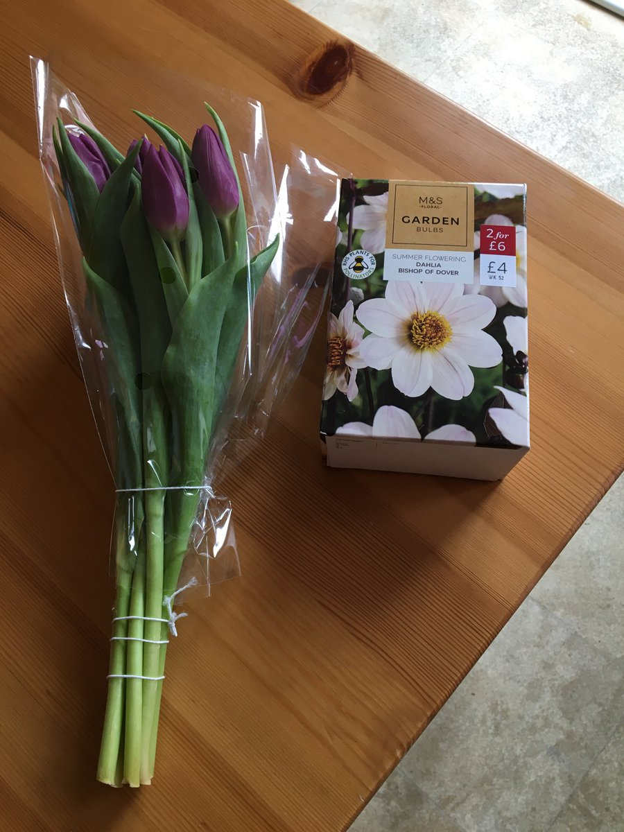 This is what impulse purchases look like for gardeners - though I've wanted a white single dahlia for a while  #garden #gardeners #flowers #Dahlias
