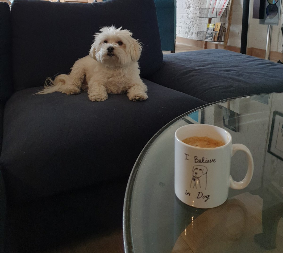 """Love this initiative by @samaritans . Brew Monday! """"The third Monday in January, thought to be """"Blue Monday"""", is being turned into Brew Monday to encourage everyone to reach out to people."""" Great idea, get that kettle on #BrewMonday  🥰🐾"""