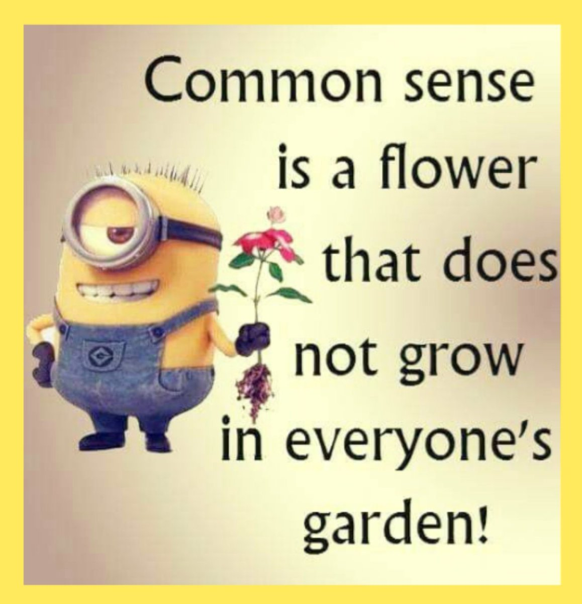 Common sense is very uncommon...🤭 #CommonSense #uncommon #TrueStory #FunFact #life #people #Weird #stupidity #Crazy #mondaythoughts #MondayVibes #MondayWisdom #quotes #relatabletweets #bewise #becareful #Mindfulness #haveaniceday #StayBlessed
