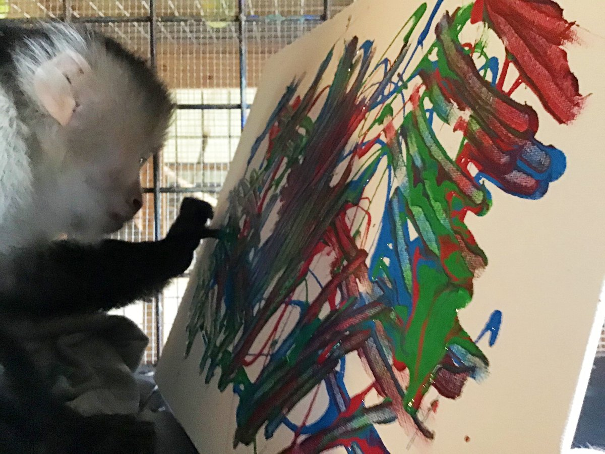 #MondayMotivation with our #Monkey pal @PocketsWarhol   Loves us a #MonkeyMonday. This is one of our favorite pictures of Pockets, the concentration & focus! His delicate little finger in the paint... #love #peace #kindness