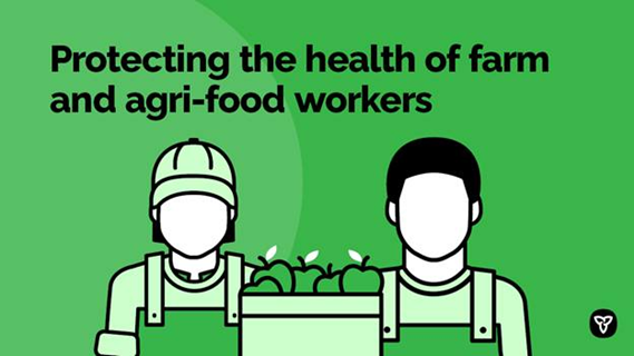 Working alongside our agri-food sector, Ontario recently launched a new strategy to help prevent the spread of #COVID19 on farms and further protect workers and the food supply ahead of the 2021 growing season. omafra.gov.on.ca/english/about/…