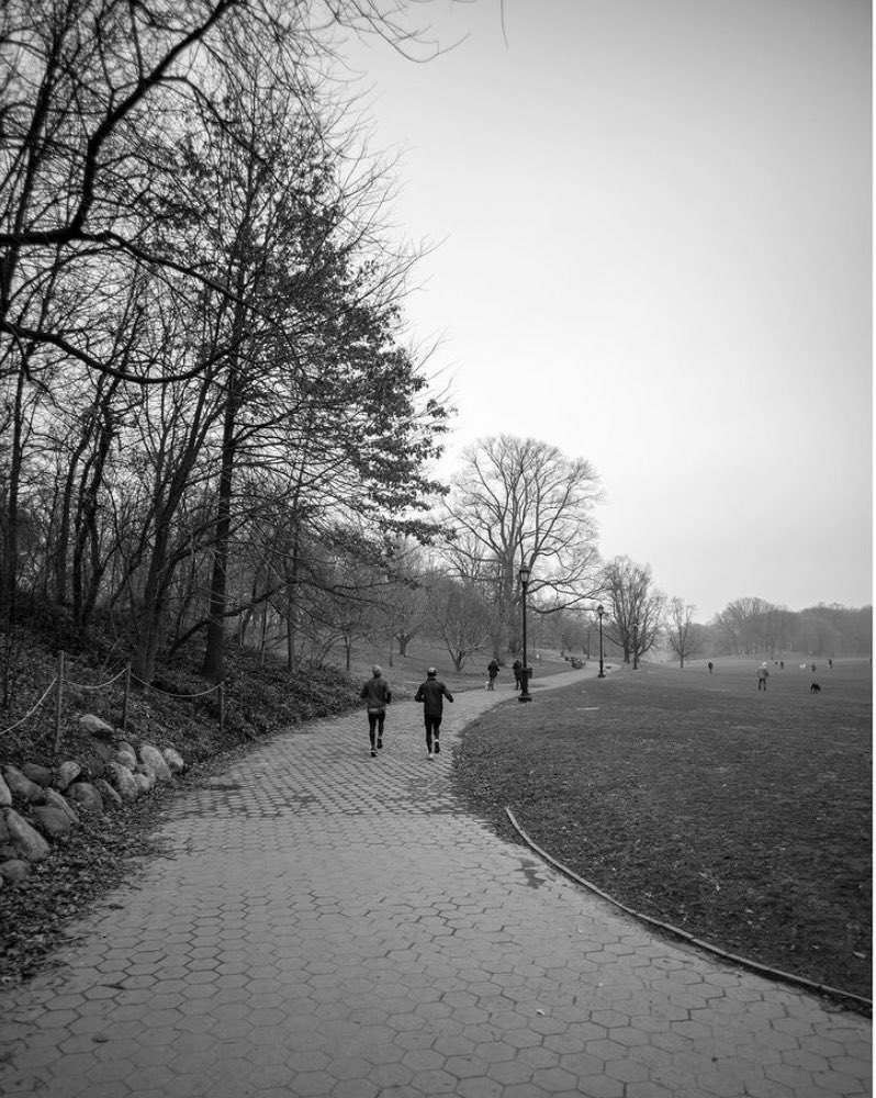 Today, we celebrate #MLKDay and honor Dr. King's legacy with acts of service. Thank you to all in the Prospect Park community who have lent a hand in Brooklyn's Backyard during this difficult year, our community is grateful for all that you do. Beautiful photo by @shawnmpridgen