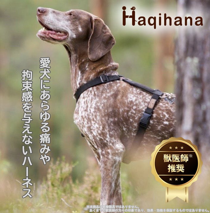 わんちゃんの肌にも優しい❣️『Haqihana(ハキハナ)ハーネス』実はまさはる君、このハーネスに代えるまで、前に付けていたハーネスだとハーネスと身体が擦れて、地肌が見えていました💧このハキハナハーネスに代えて約半年…👇
