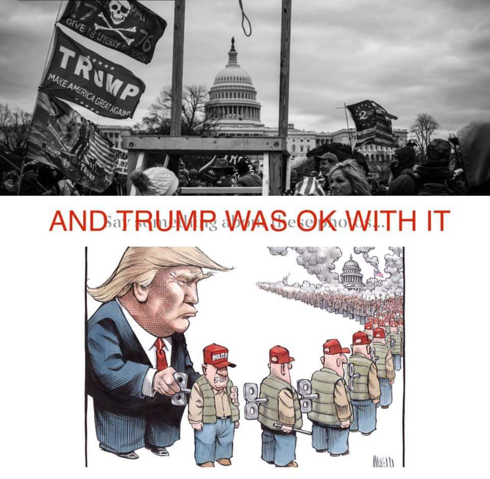 He wound them up like puppets and sent them to #riot  #TrumpTreason #TrumpIsANationalSecurityThreat #TrumpImpeachment2