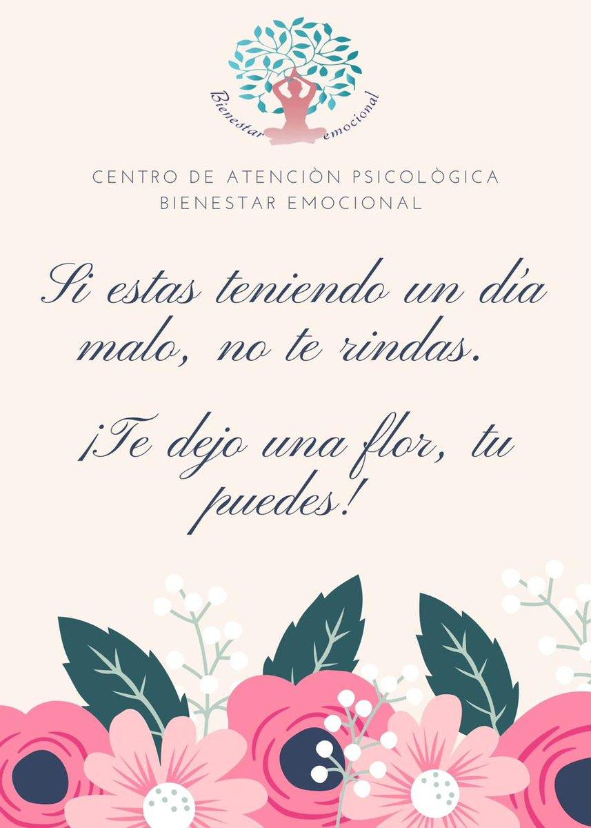 ¡Nunca te rindas! #nuncaterindas #felizlunes #animo #flores #nuncatedesporvencido #frasesmotivacionales #psicologia #emocional #bienestar