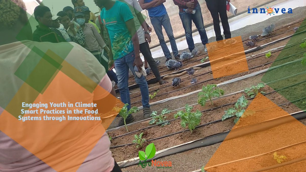 We are engaging youth in best practices for the #FoodSystems and raising #FoodSystemsHero across Africa and we believe in achieving #SDG2 through meaningful partnerships and collaborations towards the #fss21  #InnoveaSDGs