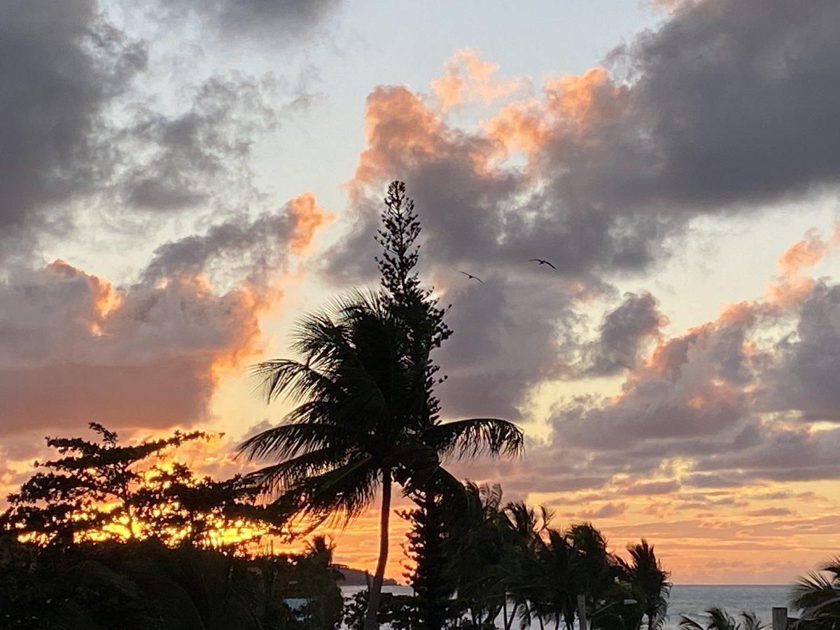 #Vamos a concentrarnos en las cosas buenas ❤️ #palmas #mar #atardecer #venezuela #puertorico #destino #vida #undiaalavez #todoestarabien #futuro #patriciaschaeferr #escritoravenezolana #alasombradelmango #yarayotrashistorias #siglema575poesiaminimalista