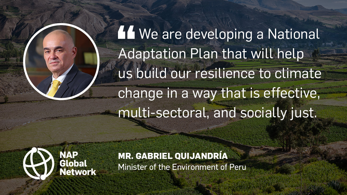 Risk and resilience were dominant themes in 2020 and were amplified by a wide range of voices 📢  Our Progress Report explores the role played by #NationalAdaptationPlans, including in Peru as led by @GQuijandriaA @MinamPeru.  Read it here 👉