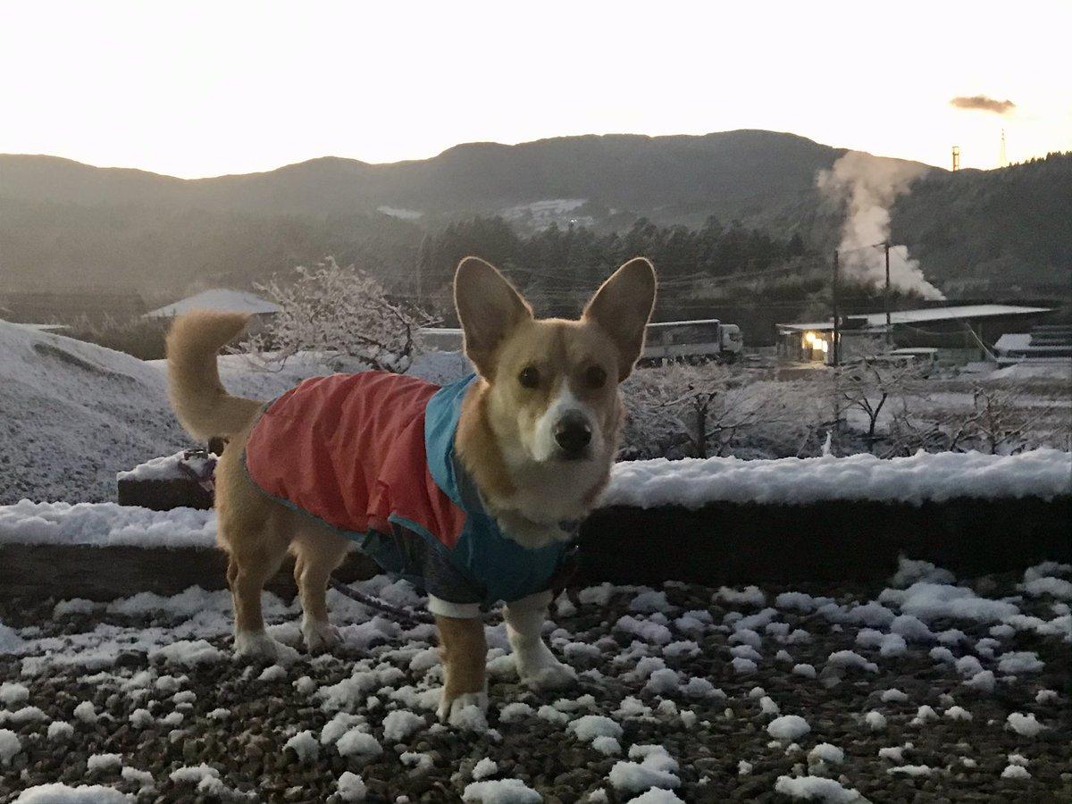 おはようございます!快晴の恵那です☀️気温は−1℃。夜中に少し雪が積もりました❄️今日は、夜にかけて気温がグンと下がる予報🥶日本海側の皆さん、大雪にお気をつけて👍今日もよろしくお願いします😊 https://t.co/hc1sgdLs9T