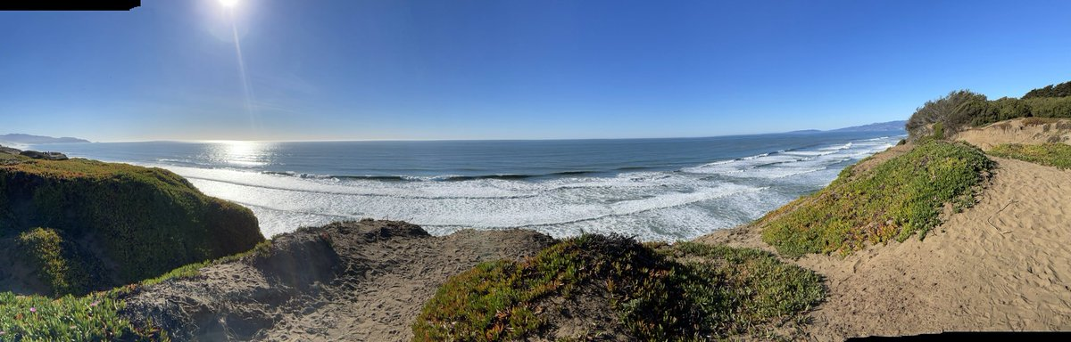 75 Degrees in mid January. Just glorious. Join us at Stanford Medicine and enjoy life in the Bay Area. Taking a moment to reflect on #MLKDay #EnjoyNature