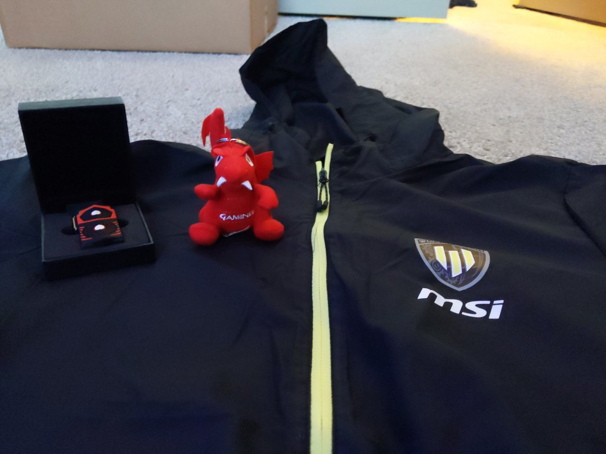 I'll be sending this @msigaming dragon plush keychain, 16gb thumb drive and large windbreaker to someone who retweets and is following. Will choose winner in 24 hours.