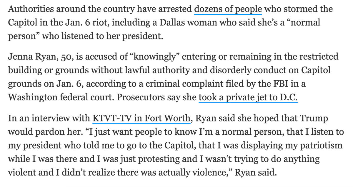 """A Dallas woman arrested for her role in US Capitol riots wants people to know she's a """"normal person"""" who listened to the """"president who told me to go to the Capitol."""" Prosecutors say she then took a private jet to DC in hopes of a pardon from Donald Trump"""