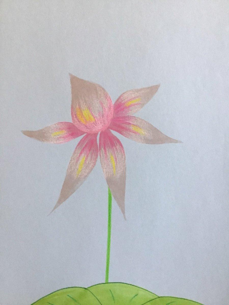 Pink heart flower  #lotus #Drawing #Art