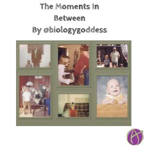 The Moments In Between By @biologygoddess - alicekeeler.com/2020/12/18/the…
