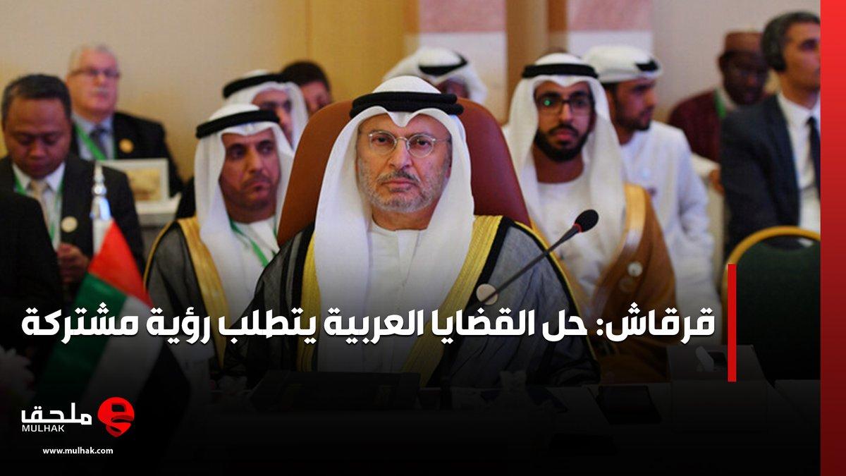 #قرقاش: حل القضايا العربية يتطلب رؤية مشتركة  #ملحق #الإمارات