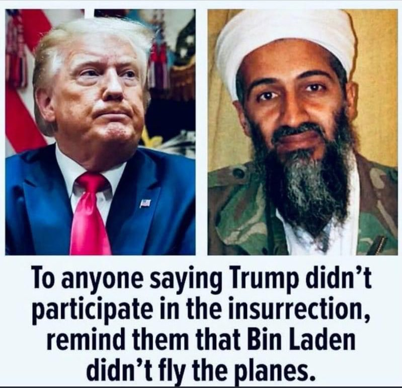 "AND a Democratic POTUS got Bin Laden after the GOP told us to ""heal and move on."" #Capitol #GOPComplicitTraitors #Terrorists"