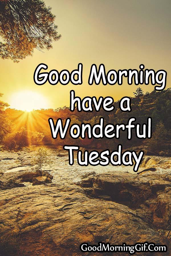 Happy Tuesday.. Best wishes..  @Rumm17913821 @Karma6X