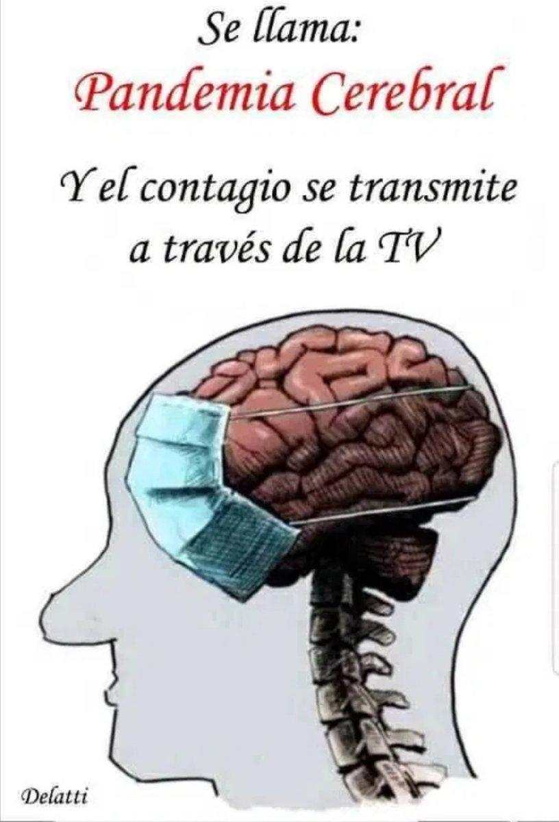@Solo__Verdad #FalsaPandemia #YoNoMeVacuno #plandemia #COVID1984 #CoronaTimo #YoNoMeConfino