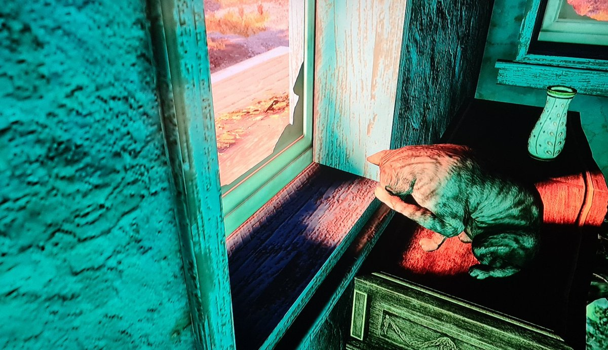It's shy and that one is GREEN. #Fallout76 #Cats #Animals #Fallout #GamingPhotography #Gaming