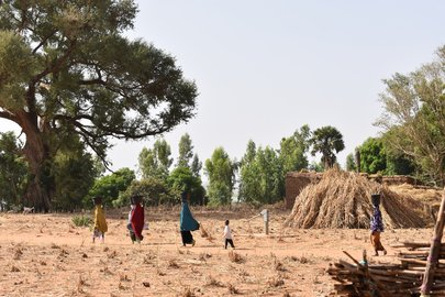 "test Twitter Media - ""In-depth national studies on #land, #climate, #energy, agriculture and development in the 11 Sahel countries show how manifold potentials of the region could be better harnessed.""   Read more: https://t.co/J39sF9FqPG https://t.co/qINkk62fpL"