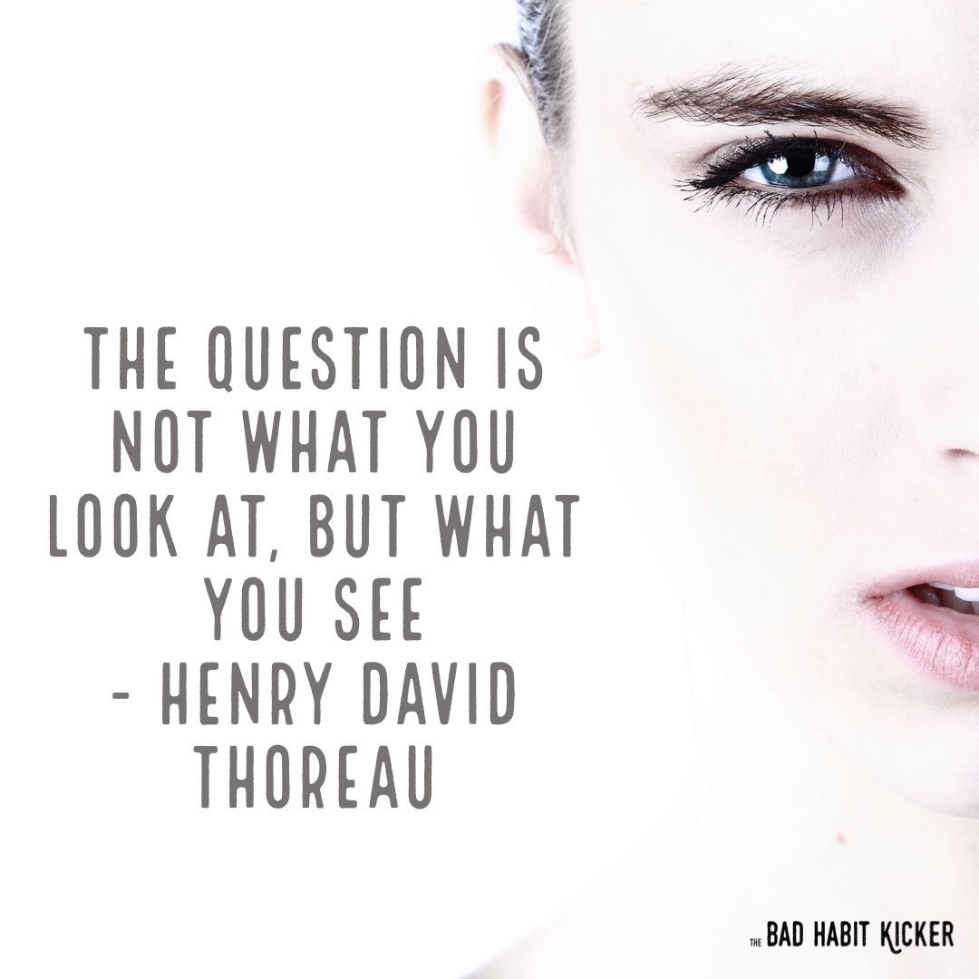 """Do you agree? """"The question is not what you look at, but what you see"""" - Henry David Thoreau #SelfHelpBooks #BadHabits #MentalHealth #ImproveYourLife #SelfImprovement #TheBadHabitKicker #BreneBrown #TheMiracleMorning #MarieForleo #TonyRobbins #5SecondRule #AtomicHabits #WayneDyer"""