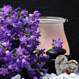 TRUE 💐LAVENDER Essential Oil | for HEALING, BEAUTY, & LOVE Botanical Name: 👾Lamiacea (Labiatae) 💜- HOLISTIC HEALTH PRACTITIONER   #skincare🟪 #beauty #mindset #BlackOwnedBusiness #essentialoils  #meditation #Healing #lavender #lavenderoil #Wellbeing