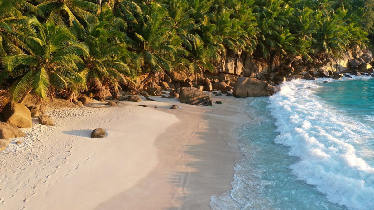 The Seychelles is leading the way, giving an example of how travel can restart post-vaccine. Travel having had the vaccine now, or when they have completed their programme, everyone can go (with conditions).     #Seychelles #Berkhamsted #TravelAgent