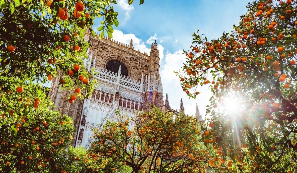 #ViveAndalucia | 10 datos importantes de Sevilla que sueles olvidar  @sevilla_secreta #Sevilla