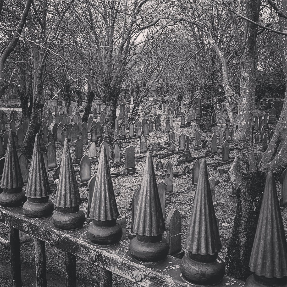 Exeunt.  (The commute scenery just got a lot more interesting) #birmingham #cemetery #graveyard #thisistheend #gothic #photography #morningcommute #thisisbirmingham #newhome