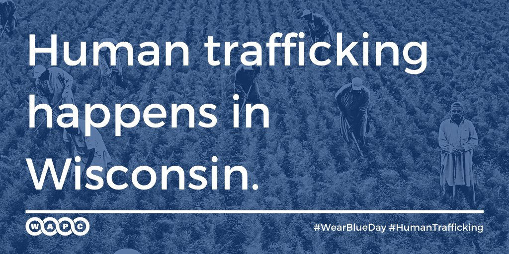 Only for the month of January!  Our webinar series on risk factors that increase #humantrafficking vulnerability will be offered #FREE to WAPC members.     #WearBlueDay #PerinatalWisconsin
