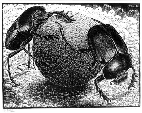 Scarabs, 1935 #mcescher #escher