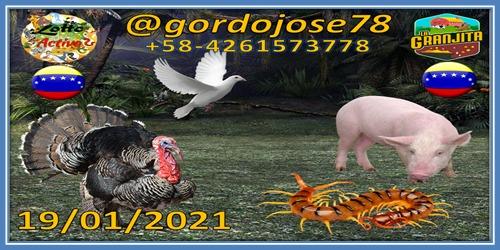 INFORMACION ABIERTA DEL STAFF DE PRONOSTICADORES #Deportes #sports #LoUltimo #liveline    #COVID__19 #Covid_19 #COVID19 #Tips #TIPSTAR  #QuedateEnCasa #19Enero  #Hipismo   #futbol #NFLnaESPN #Venezuela #NBA2K21MyTeam