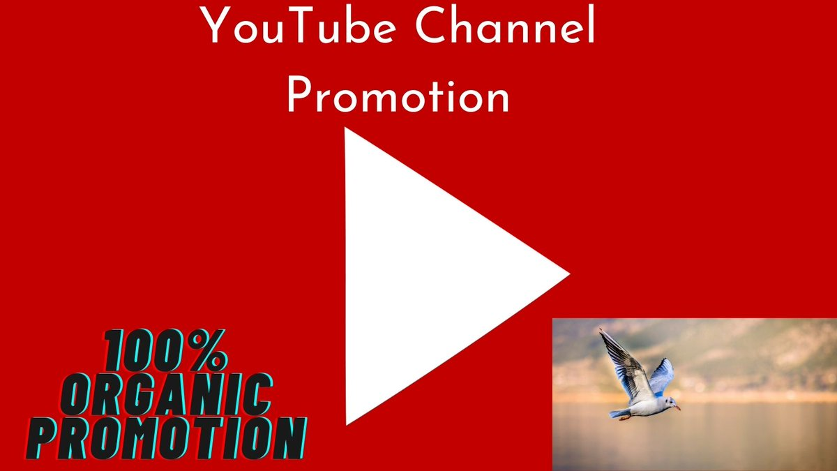 I will do promotion for the youtube channel.  More Info At Fiverr:   #youtubepromotion #youtubevideopromotion #youtubechannelpromotion #youtubevideos #youtubevideo #youtuber #youtube #youtubers #iotanvir #JOON #WaleGoodVibes #Lakers #youtubeseo #sub4sub