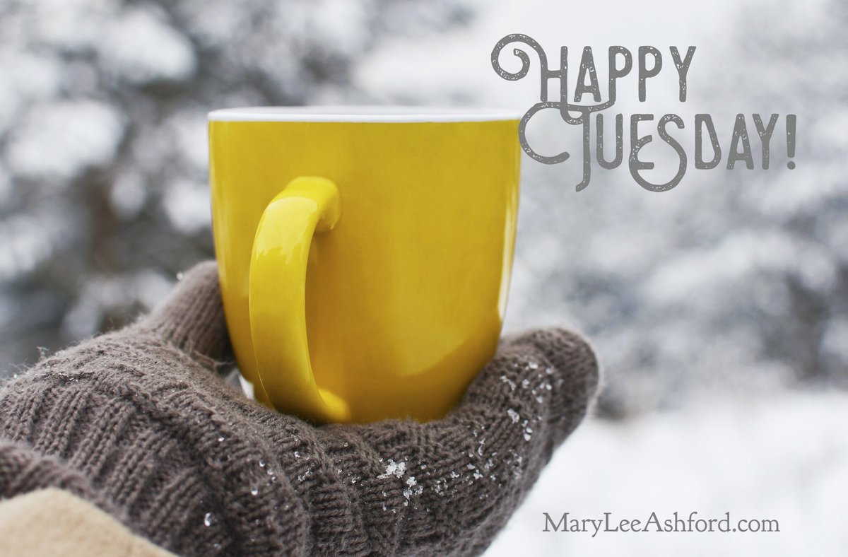 Good morning, friends! Happy Tuesday! What are you up to today? #tuesdayvibe #amreading #amwriting