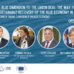 Image for the Tweet beginning: ⛴️SEArica #blueeconomy online conference   🌊a