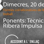 Image for the Tweet beginning: Idea organitza un monogràfic on-line
