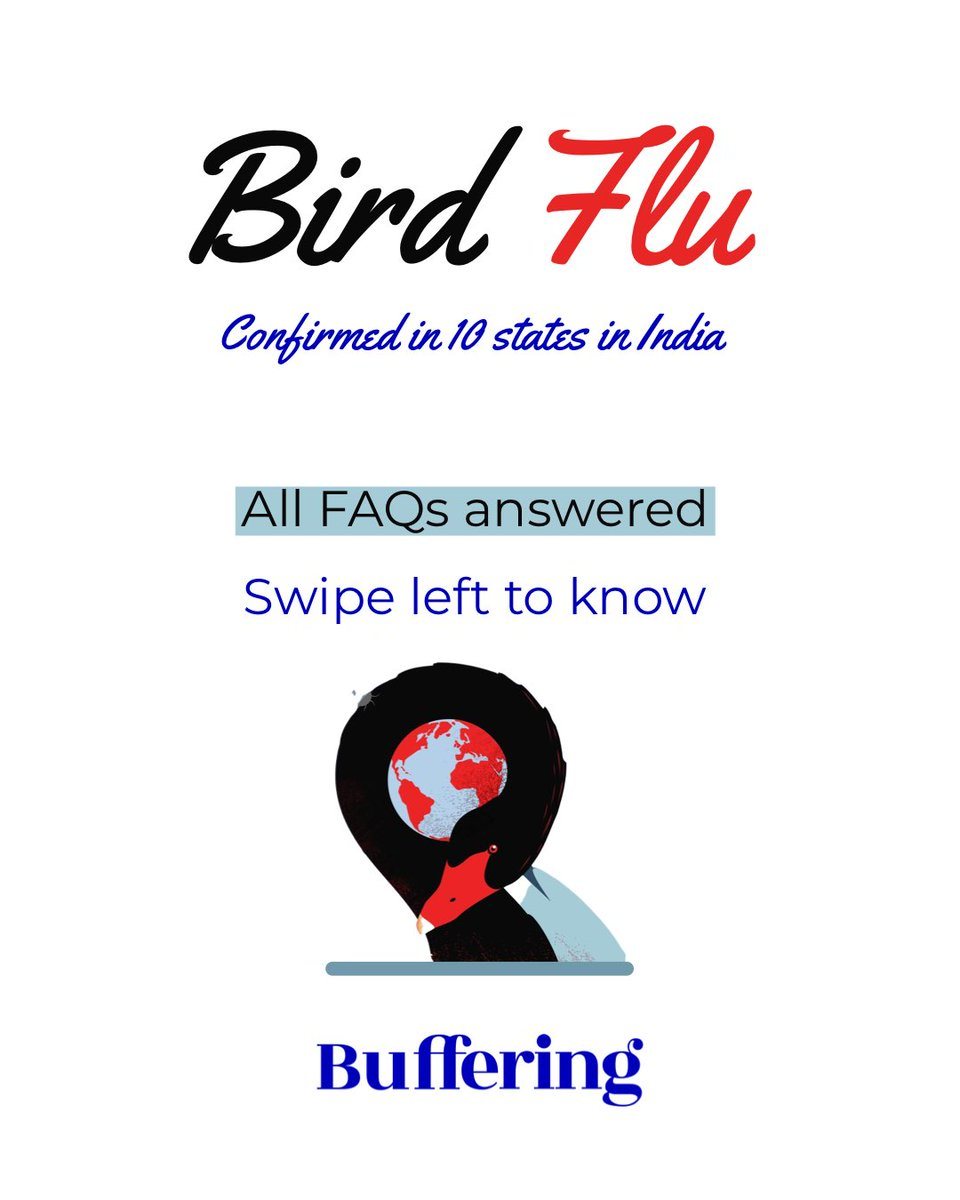 The Avian or Bird flu is all the rage right now.  Our country hadn't recovered from the Covid crisis yet and we face a different challenge now.   Take care, be safe and stay healthy! #birdflu #avianflu #birdfluindia #buffering #bufferingagency #birdfluprecautions
