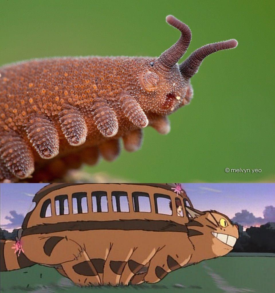 @thegallowboob @Pixar @Disney Studio Ghibli has already been there (almost)...