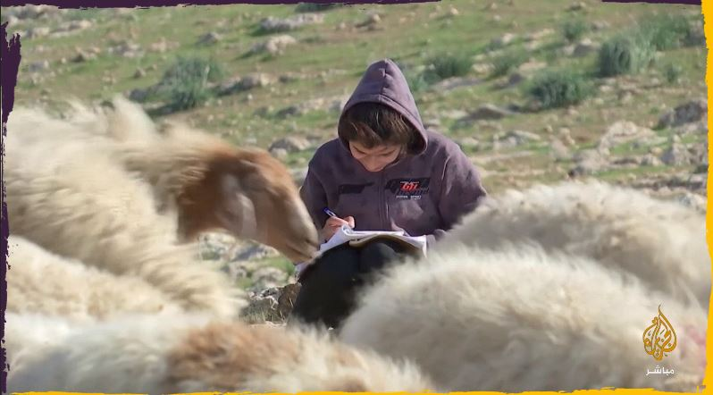 التعلم عن بعد في أصعب ظروفه.. فلسطينيو مخيمات البدو في #الضفة_الغربية يكافحون للتعلم عن بُعد في ظل جائحة #كورونا