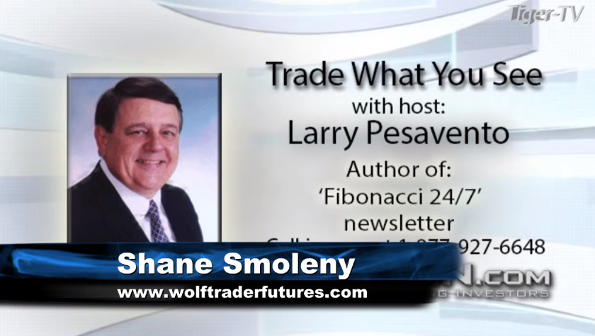 Larry Pesavento and guest Shane Smoleny of  host Trade What You See for Tuesday morning on @TFNN and discussed $HSI $JPY $GC $SPY #StockMarketNews and more! #Fibonacci #TuesdayTrades #TFNN #Learntotrade #financialeducation