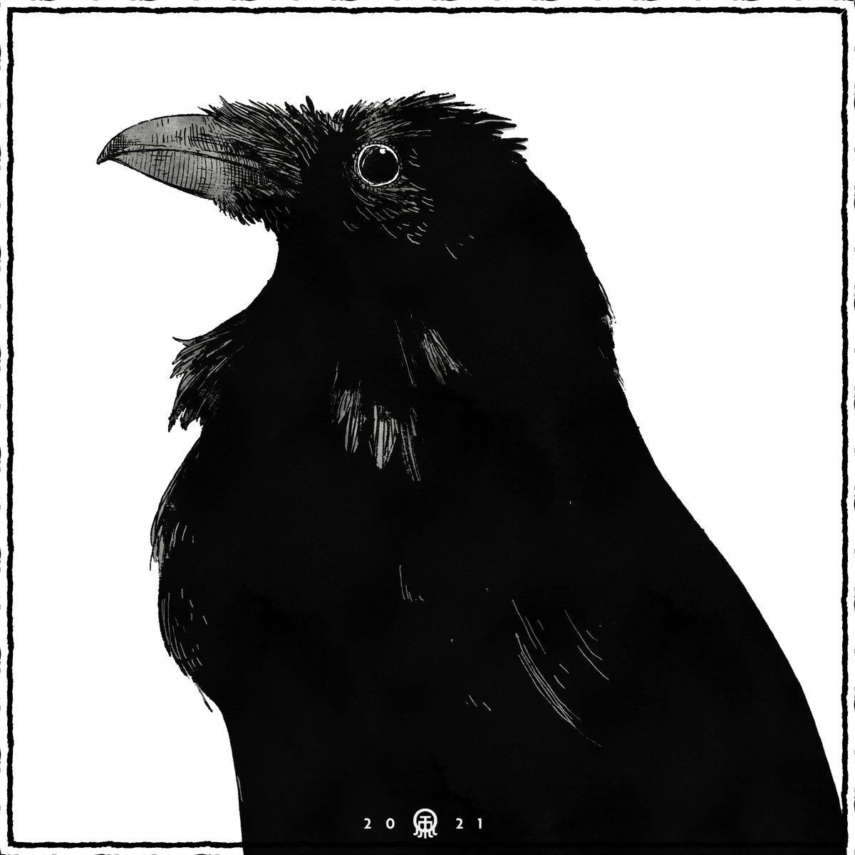 Edgar Allan Poe (/poʊ/; born Edgar Poe; January 19, 1809 – October 7, 1849) Φ Φ Φ Φ Φ #edgarallanpoe #poe #nevermore #crow #crows #raven #sketch #doodle #darkart #darkartists #darkartwork #lowbrowart #lowbrowartist #horrorart #horrorartwork https://t.co/NLIGQStQkc