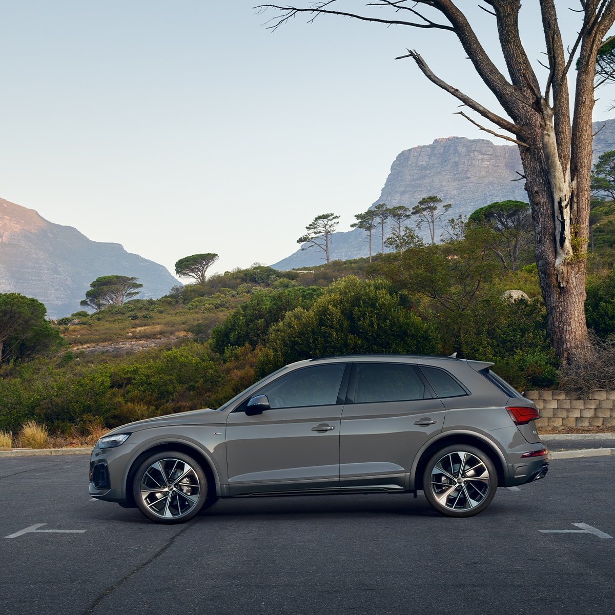 Choose your view.   #AudiQ5