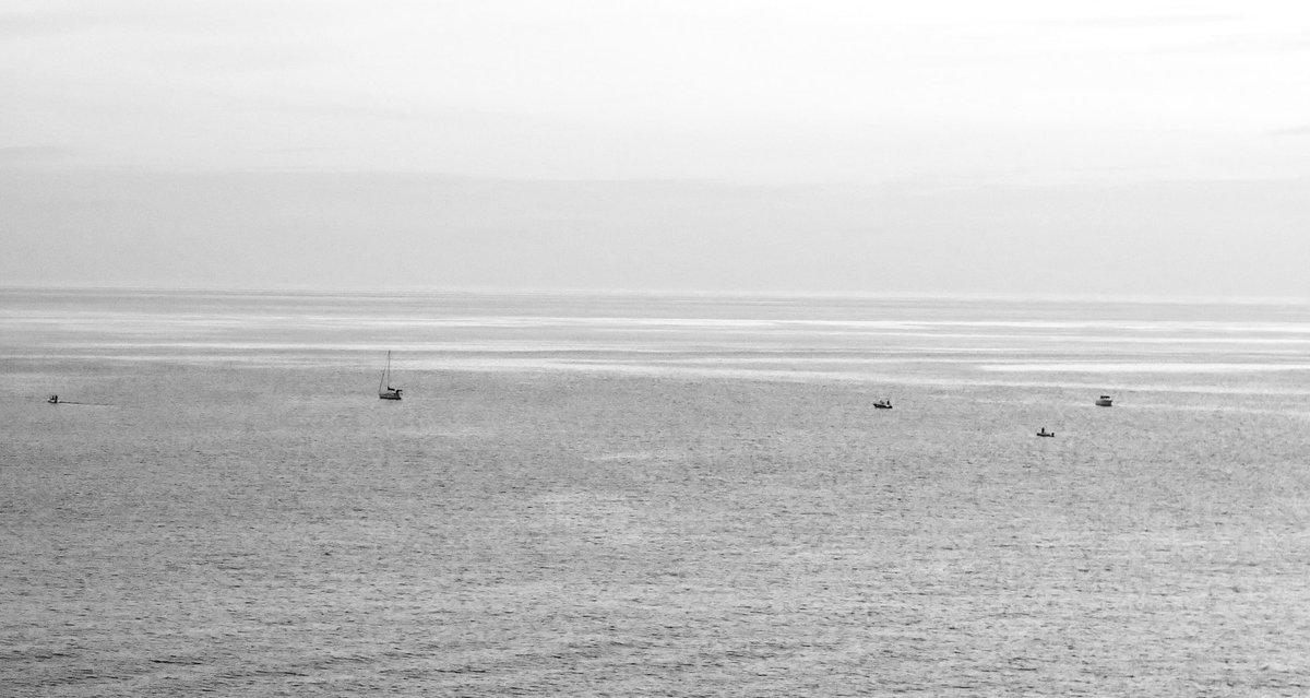 A ver si adivináis dónde estaban hace una hora los calamares. #CabodeGata #Níjar