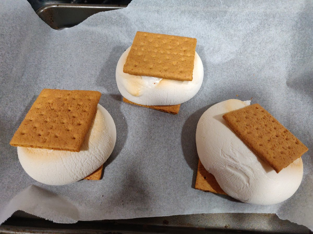I HAVE MASTERY OVER #SANDWICH IN ALL ITS FORMS! (Especially #Smores)