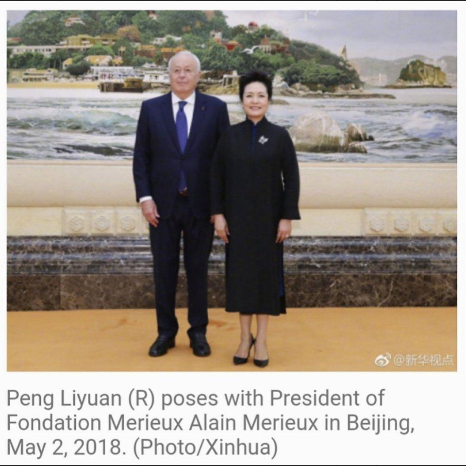 #CCP 📰 Peng Liyuan meets with president of Fondation Merieux #France #Chine #BioMérieux #FondationMérieux #AlainMérieux #PengLiyuan #XiJinping #COVID19france #FranceDiplo #OMS #PasseportSanitaire #confinement #CouvreFeu18h00 #Macron