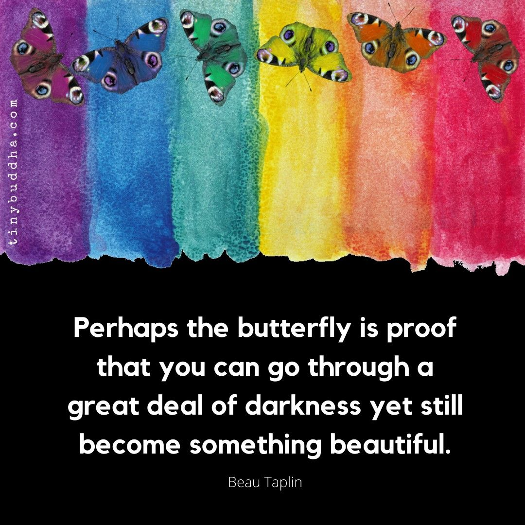 Perhaps the butterfly is proof you can go through a great deal of darkness yet still become something beautiful. ~Beau Taplin