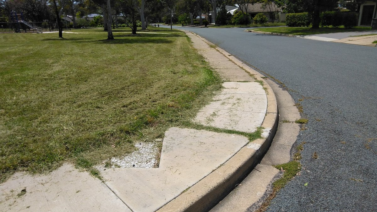 @StephenCena @UniCanberra @FionaDyer @2CC Did you ask whether the recent mowing of grassed areas near drains and roads had anything to do with it? #runoff